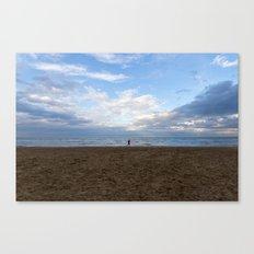 Running free Canvas Print