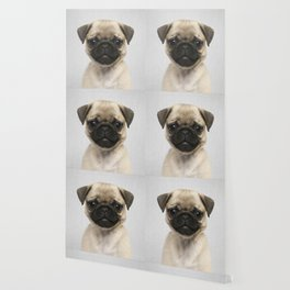 Pug Puppy - Colorful Wallpaper