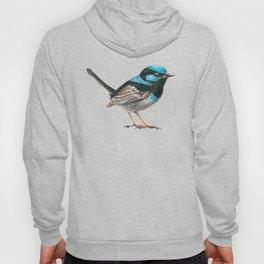 Fairy wren bird Hoody