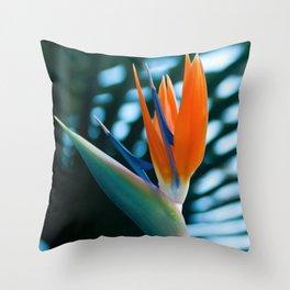 CORAL Bird of Paradise Throw Pillow