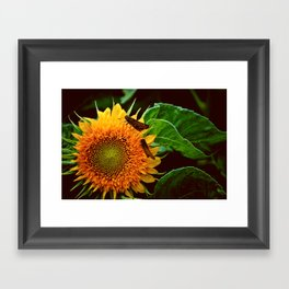 A Place For Us Framed Art Print
