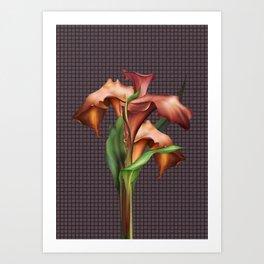 Burnished Orange Calla Lilies Art Print