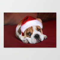 bulldog Canvas Prints featuring Bulldog by Julie Hoddinott