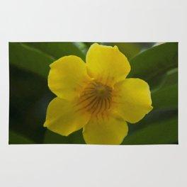 Floral Print 010 Rug