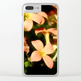 Kalanchoe Blossfeldiana 1 Clear iPhone Case