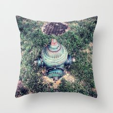 And Not A Drop To Drink Throw Pillow