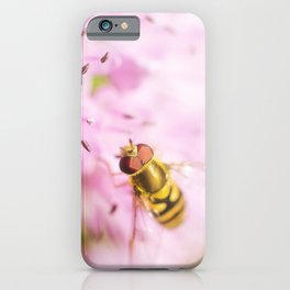 Hoverfly on Allium - Onion Flower 7 iPhone Case