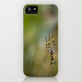 Golden Orb Weaver iPhone Case