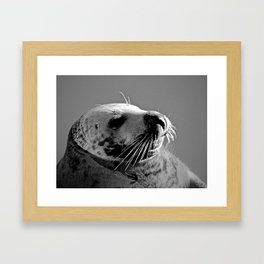 Howth Harbour Seal Framed Art Print