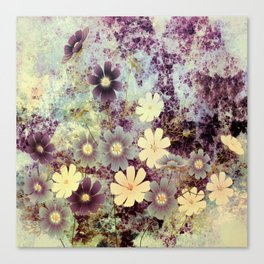 Cosmos and textures Canvas Print