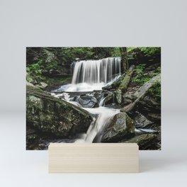 Appalachian Waterfall IX - Ricketts Glen Adventure Mini Art Print