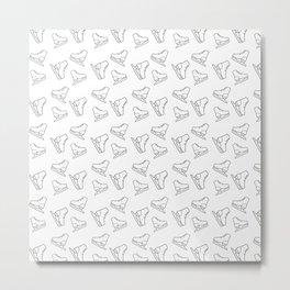 Skates sport pattern Metal Print