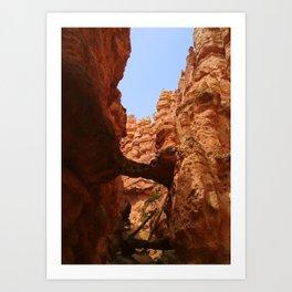 Bryce Canyon - Arch Art Print