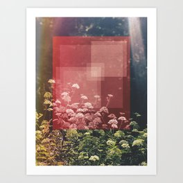 Abstract Finding Art Print