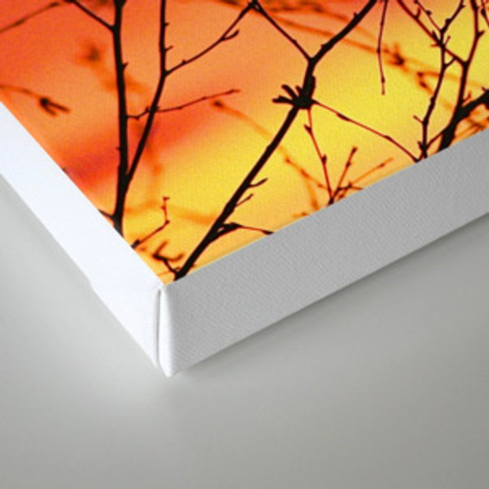 Spring Sunset Branches Silhouette #decor #society6 Canvas Print