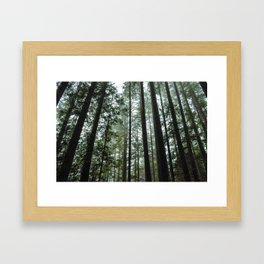 Lost in the Pacific NorthWest Framed Art Print