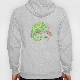 Swirly Chameleon Hoody