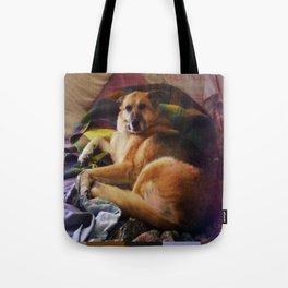 What a dog Tote Bag