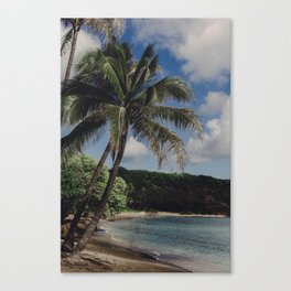 Hawaii Haze - Tropical Beach with Palm Trees Canvas Print