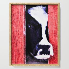 Black and White Cow Peeking thru the Red Barn Door Serving Tray
