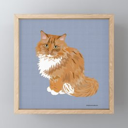 Ginger and White Fluffy Cat Framed Mini Art Print