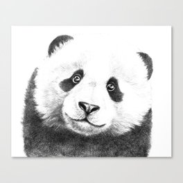 Giant  Panda G100 Canvas Print