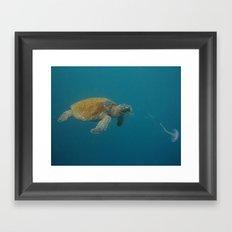 Eat all the jellyfish! Framed Art Print