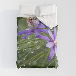 Meadow Dew Comforters