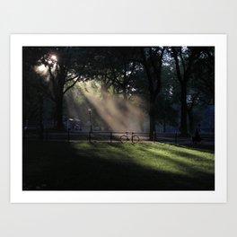central park mist Art Print