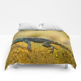 Eidechse Comforters