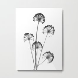 black and white flower wallpaper, flower decor, printable art Metal Print
