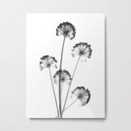 black and white flower wallpaper, flower decor, printable art Metal Print