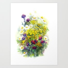 Watercolor meadow flowers Art Print
