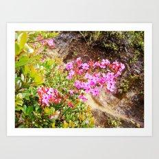Volcanic Petals Art Print