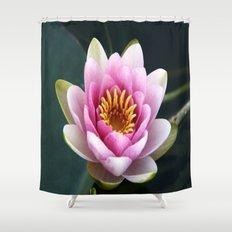 Pink / White Lotus Bloom Shower Curtain