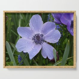 Purple flower with dew drops I Nature I Spring I Garden I Photography Serving Tray