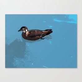 Wood; duck Canvas Print