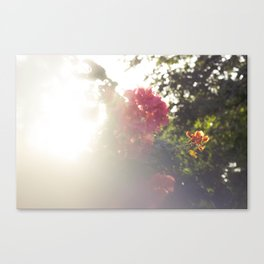 Tropic Blurs Canvas Print