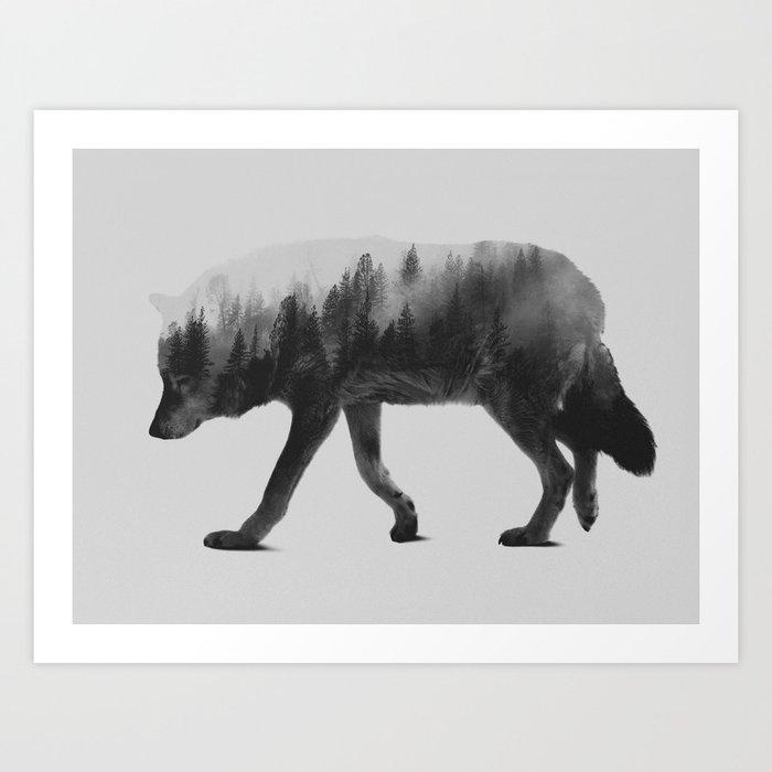 Black and White Wolf Wallpaper - WallpaperSafari |White Wolf And Black Wolf Art