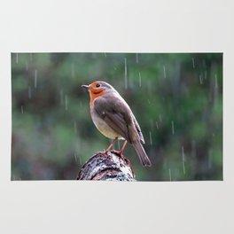 Robin in the rain Rug