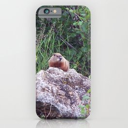 Groundhog on a Rock iPhone Case