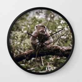 monkey forest / indonesia Wall Clock