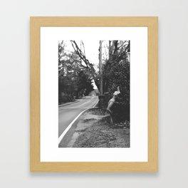 Willow Street Framed Art Print