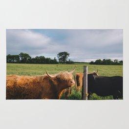 Highland Cows III Rug