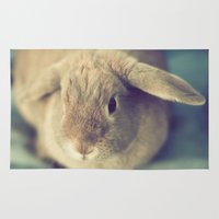 bunny Area & Throw Rugs featuring Bunny by Jessica Torres Photography
