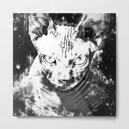 sphynx cat from hell wsbw Metal Print