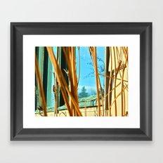 Complimentary Framed Art Print