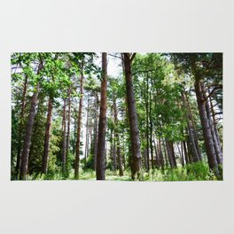 Hidden Forest Rug