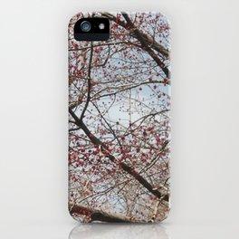 Rouge iPhone Case