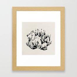 Haworthia Succulent Black-White Print Framed Art Print